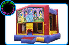 Disney Princess 4 in 1  DISCOUNTED PRICE